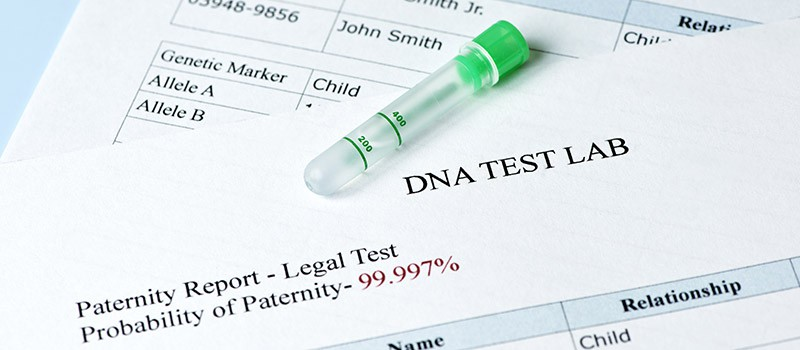 Establishing Paternity and Father DNA Test