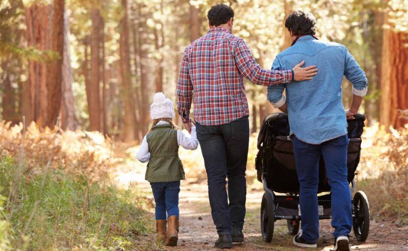 Gay parent adoption, Same-sex parent adoption, LBGT Adoption